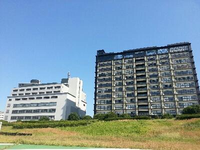 2012年の東京1人旅:4日目